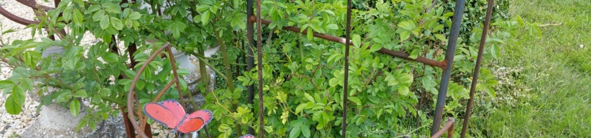 Ferronnerie de pierre et jardin for Achat plante jardin
