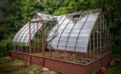 Serre ferronnerie de pierre et jardin